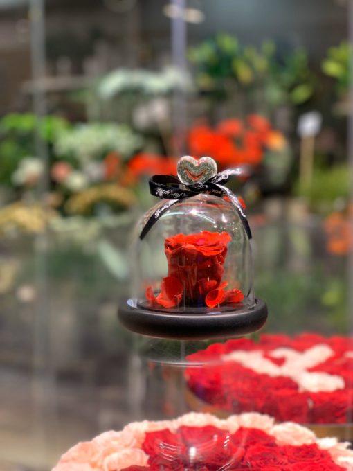 Enchanted rose Endast blomma röd