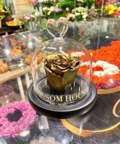Enchanted rose Endast blomma guld